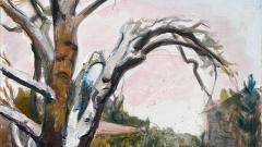 Непоказвани картини на художничката Дора Бонева