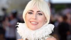 Кой и защо открадна кучетата на Лейди Гага