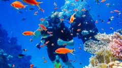 Средиземноморска туристическа диета: Египет