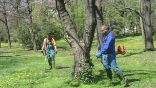 Девет екипа обработват тревата в София срещу кърлежи и комари