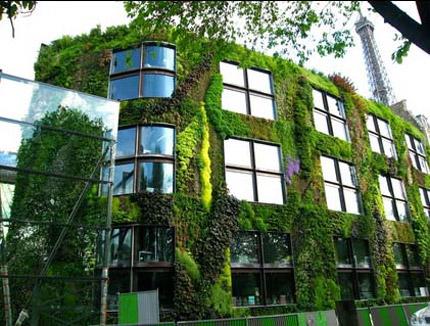 """Новатори: """"Зелен"""" покрив на всяка нова сграда във Франция"""