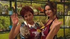 """Манджитевъв втория сезон на """"Мама готви по-добре"""" кипват от 12 септември"""