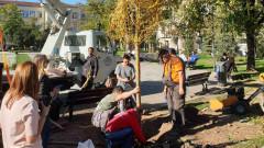 """Засадиха нова върба пред църквата """"Св. Седмочисленици"""""""