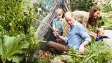 Защо Уилям и Кейт са перфектното семейство