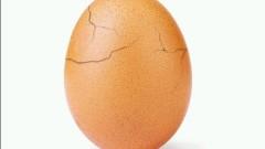 Тайната на яйцето-Instagram звезда е разгадана