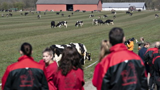 В Дания публичните събирания до 500 души остават в сила до септември