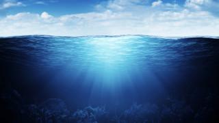 5 невероятни факта за океаните