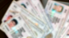 """С """"подписка"""" са двама плевенчани, фалшифицирали документи"""