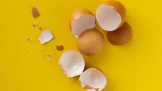 Още две причини да не изхвърляме черупките от яйцата