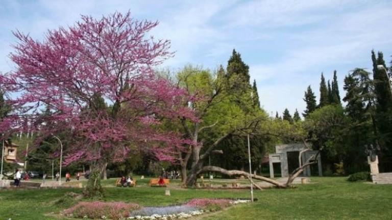 Пловдивчани настояват застрояването на зелените площи да спре