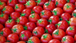 Денят, в който изведнъж пуснаха домати