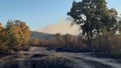 Потушиха пожара в Хасковско