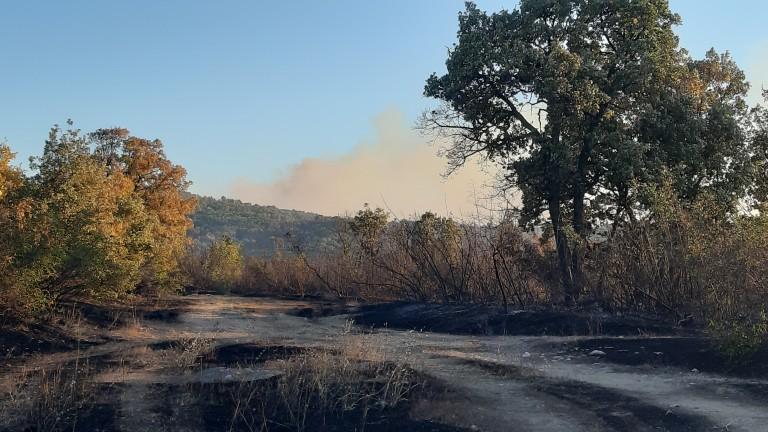 Снимка: Продължава гасенето на пожара в Хасковско