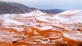 В Сахара падна сняг за пръв път от близо 40 години