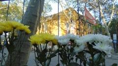 Тютюневите складове в Пловдив вече веднъж спасени от МК