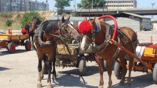 Плевнелиев: Няма незаконна ромска махала в Петрич