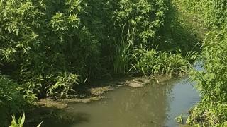 Екоинспекцията в Шумен наложи глоби за 23 000 лв.