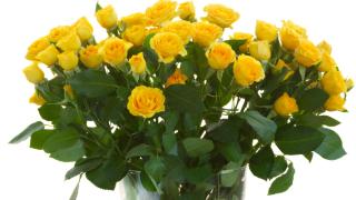 Търговците на цветя масово крият оборотите си