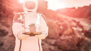 Как ще се изхранват един милион души на Марс