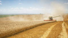 България произвежда повече зърно от Гърция, Хърватия и Португалия взети заедно