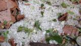 Комисия оценява щетите след опустошителната градушка в Плевенско