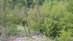 Петима туристи се изгубиха край пещера в Кърджалийско