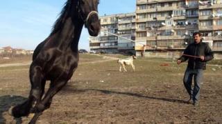 Бутат десетки цигански къщи във Варна
