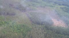 Над 10 часа гасят торфа край Чернобил