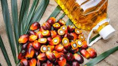 Идва ли краят на палмовото масло
