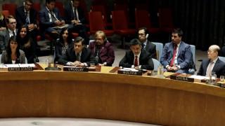 Съветът за сигурност одобри 30-дневно спиране на огъня в Сирия