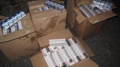 Граничари спипаха над 100 хил. къса контрабандни цигари в кола