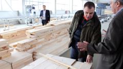 Найденов погна дървената мафия