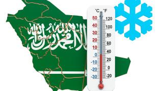 Студ в Саудитска Арабия