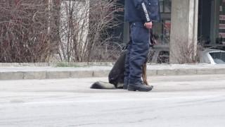 Поставят под карантина румънско село заради 32 заразени с COVID-19