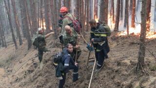 Огнеборци се борят с голям горски пожар в Старозагорско