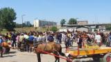 Градският транспорт в Пловдив пред колапс