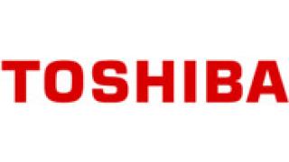 """Toshiba """"вкарва"""" 700 млрд. йени в екологична енергия"""