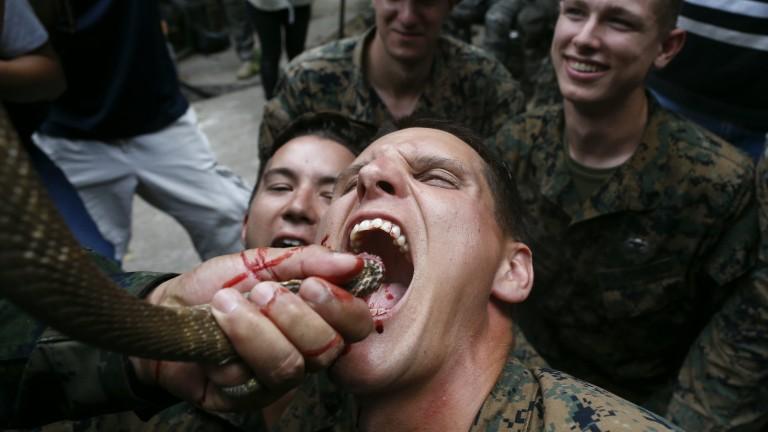Американски и тайландски пехотинци пиха змийска кръв и ядоха скорпиони