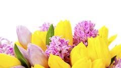Следят за нерегламентирана търговия с цветя и свещи около храмовете