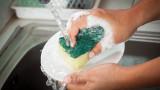 Кухненската гъба - развъдник на микроби и вируси