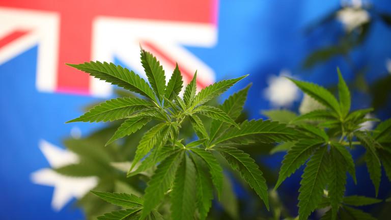 Първият град в Австралия, в който марихуаната става легална