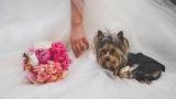Ива Лукарски публикува още снимки от професионалната фотосесия на сватбата си