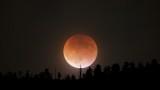 Рядко космическо събитие на 31 януари - кървава синя супер Луна