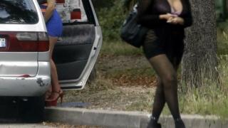 Хванаха 18 проституиращи край Плевен