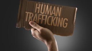 Събирането на зелен хайвер може да ви вкара в трафика на хора