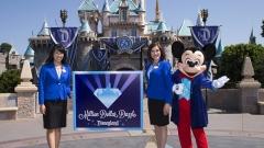 Disneyland в Париж ще строи соларен парк с площ равна на 24 футболни игрища