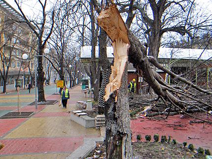 Ураганен вятър в части на България, жълт код за 23 области