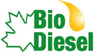 Испанци искат Плевен за производство на биодизел