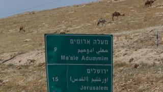 Най-малко седем палестинци са ранени от три ракети