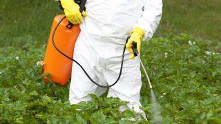 """""""Монсанто"""" тайно финансирали позитивни проучвания за пестицида Roundup"""